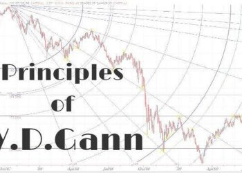 principles of wd cann