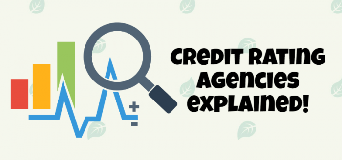 A Brief Understanding on Credit Rating Agencies