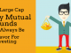 large cap equity mutual fund