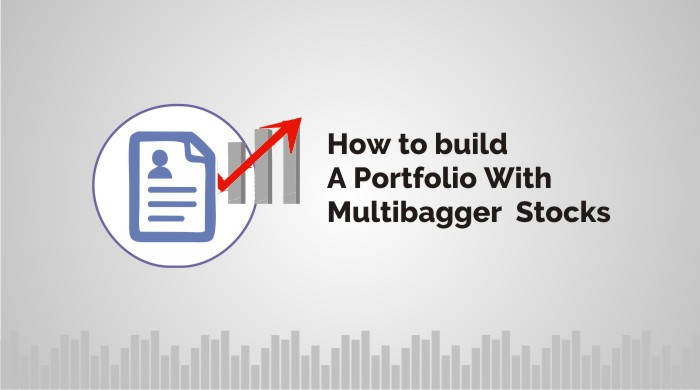 multibagger stocks portfolio