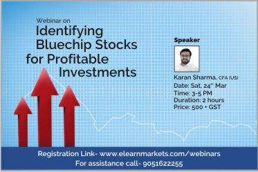 Identifying bluechip stocks for profitable investments
